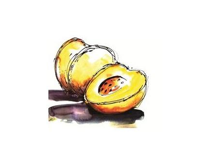 DiNature gateau Abricot petit