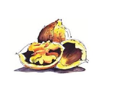 DiNature sablé noix Isére petit