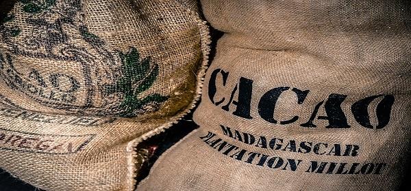 DiNature catégorie Chocolat Cacao